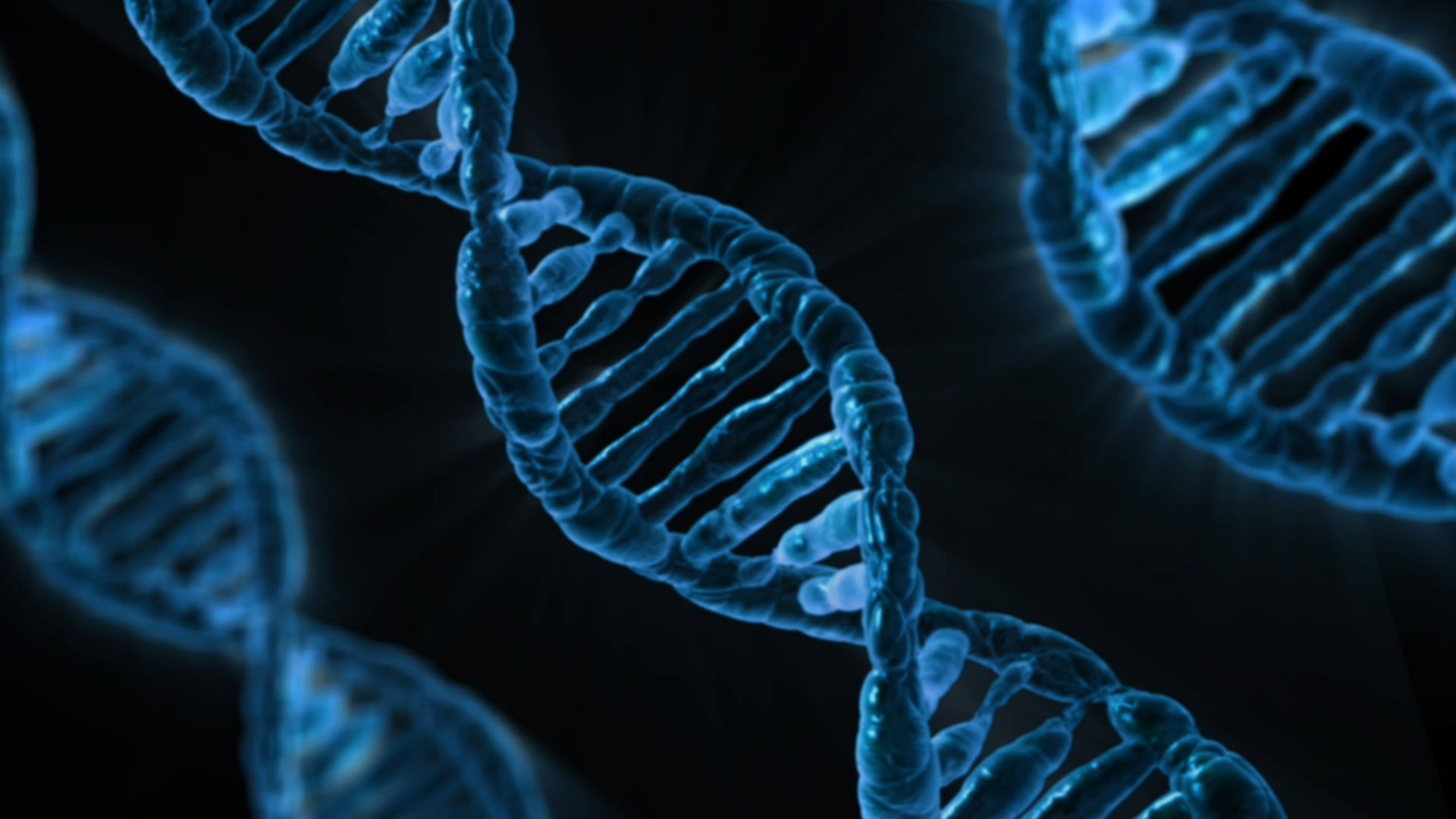 DNA apps promise deeper insights for consumers – but at what cost?