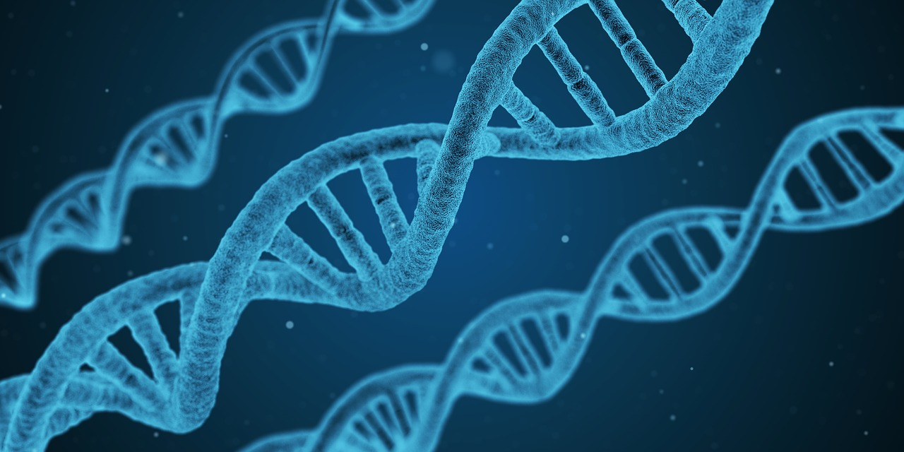 Human cloning: To commend or condemn? Advantages & Disadvantages