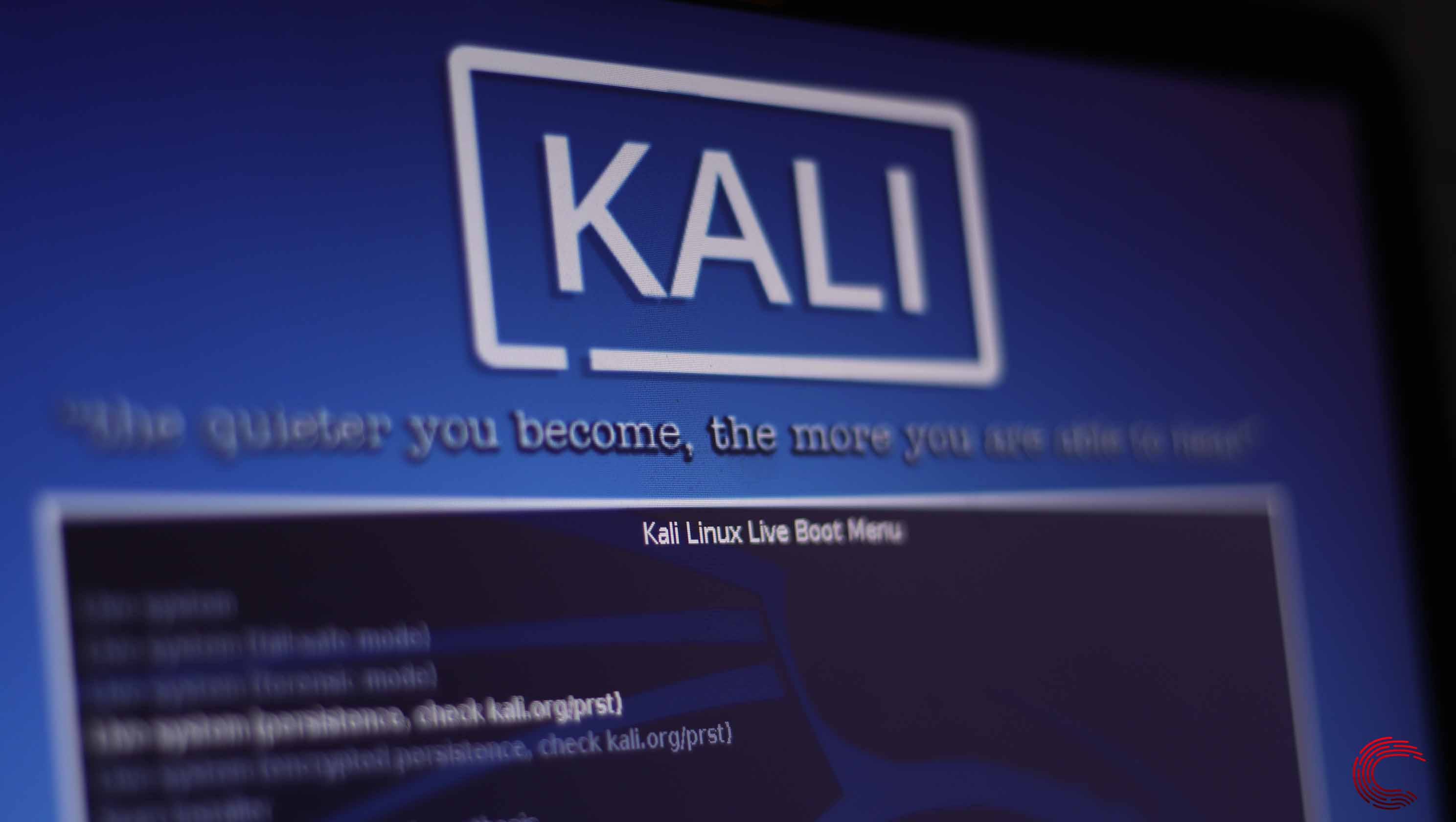 How to update Kali Linux? Everything you need to know