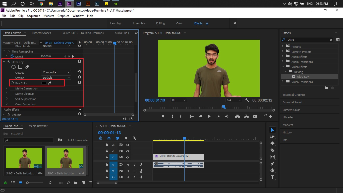 How to work with a green screen in Adobe Premiere Pro?