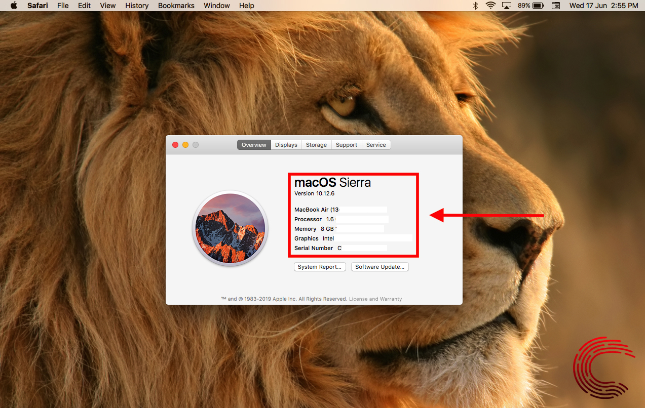 How to check your MacBook's specs? | Candid.Technology