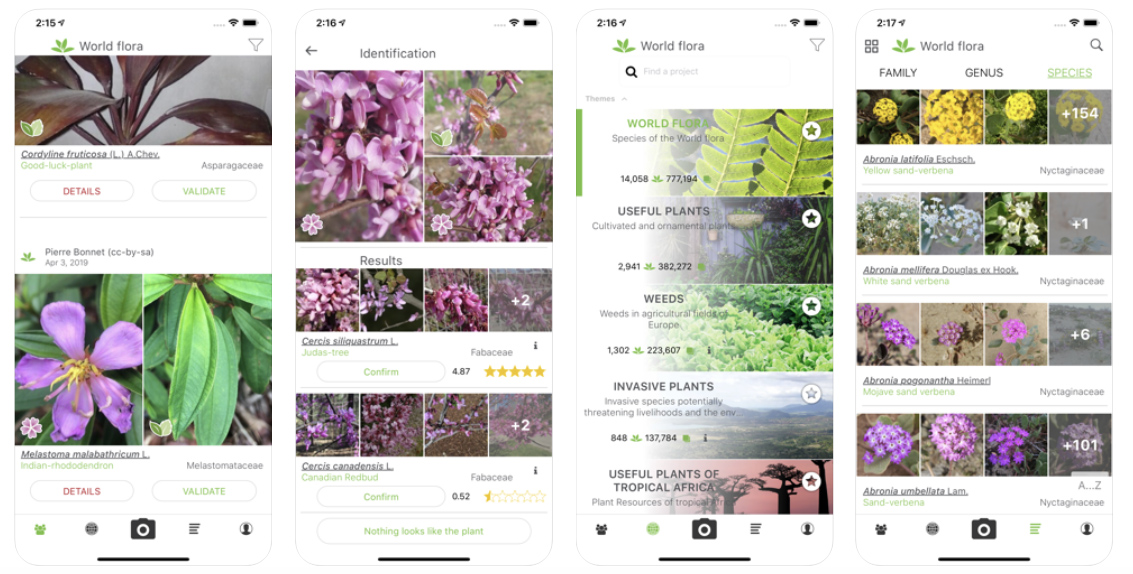 Top 7 plant identification apps for Android and iOS