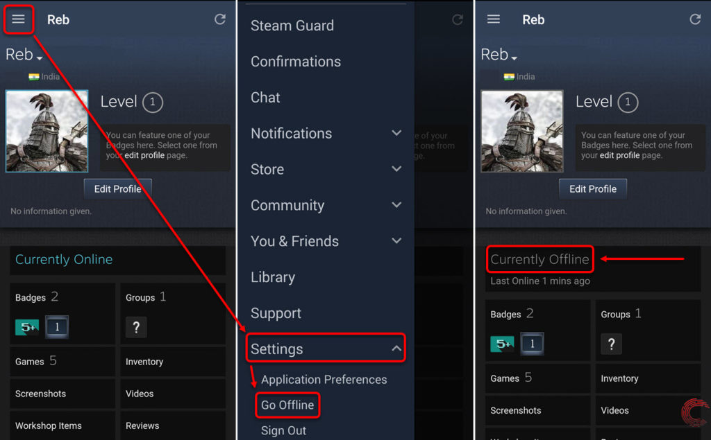 How to appear offline on Steam?   Candid.Technology