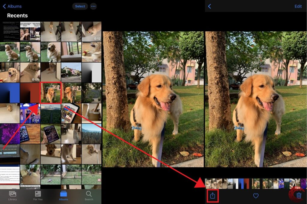 How to transfer photos and videos from iPhone to Windows PC?