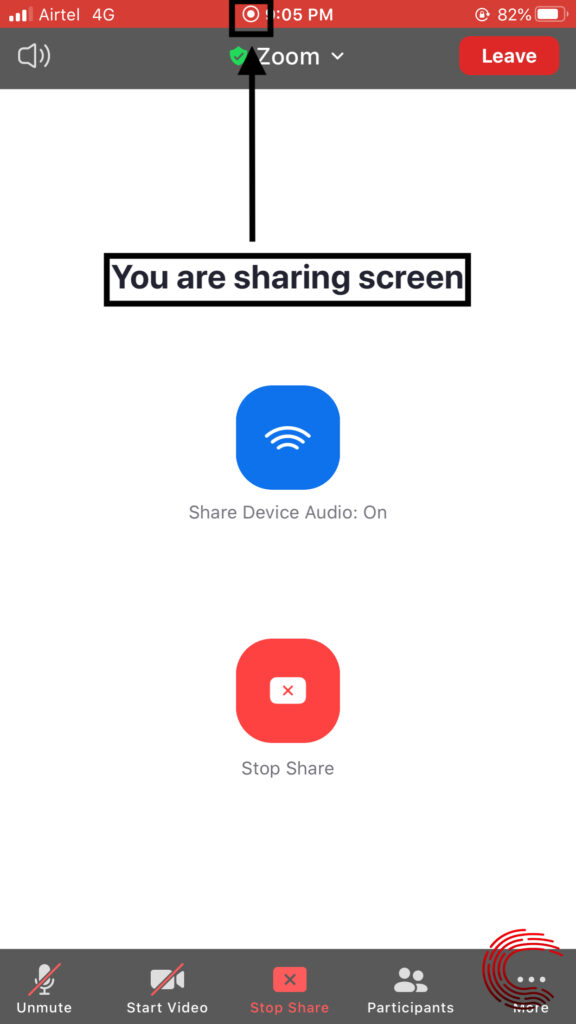 What all can a Zoom host see when you screen share?