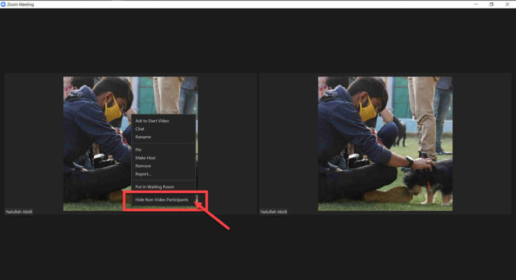 How to show a profile picture in Zoom instead of video?